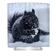 The Sought After Prize Shower Curtain