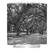 The Southern Way Bw Shower Curtain