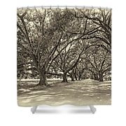 The Southern Way Sepia Shower Curtain by Steve Harrington