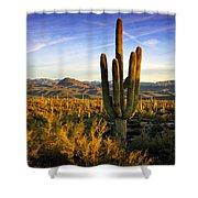 The Southwest Golden Hour  Shower Curtain