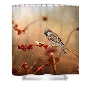 The Sparrow Shower Curtain
