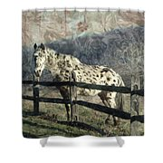 The Speckled Horse Shower Curtain