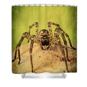 The Spider Series X Shower Curtain