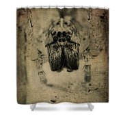 The Spider Series Xiii Shower Curtain