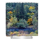 The Spokane River In The Fall Colors Shower Curtain