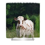 The Spotted Cow Shower Curtain