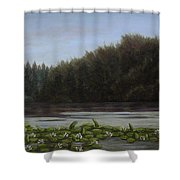 The Spring On The Lake Shower Curtain