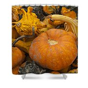 The Squash Harvest Shower Curtain