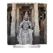 The Sri Meenakshi Temple Shower Curtain
