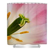 The Stamen Shower Curtain
