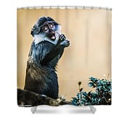 The Starving Ape Shower Curtain