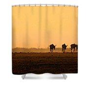 The Straggler Shower Curtain