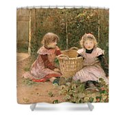 The Strawberry Patch Shower Curtain