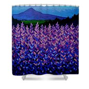 The Sugar Loaf - Wicklow - Ireland Shower Curtain