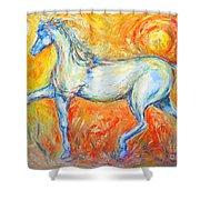 The Sun Horse Shower Curtain