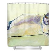 The Sunbather Shower Curtain