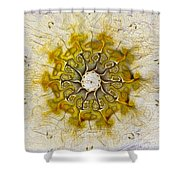 The Sundial Shower Curtain