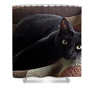 The Supervisor Shower Curtain by Luther Fine Art