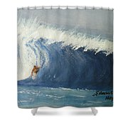 The Surfing Shower Curtain