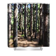The Surreal Forest Shower Curtain