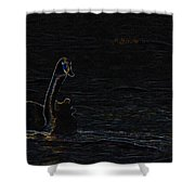 The Swan Of Tuonela Shower Curtain