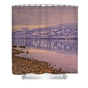 The Swans On Winter Solstice Shower Curtain