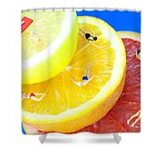 The Swimming Pool Little People On Food Shower Curtain
