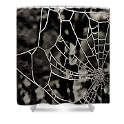 The Tangled Web Shower Curtain