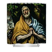 The Tears Of St Peter Shower Curtain