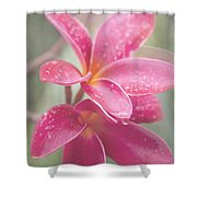 The Temple Tree Shower Curtain