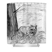 The Teutonic Fox Shower Curtain