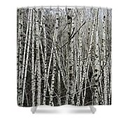 The Thicket Shower Curtain