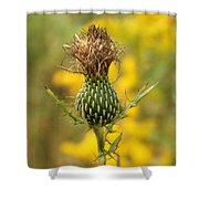 The Thistle Shower Curtain