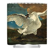 The Threatened Swan Shower Curtain