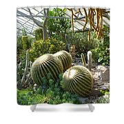 The Three Cacti Shower Curtain