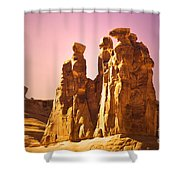 The Three Gossips In The Light Shower Curtain