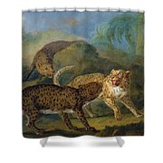 The Three Leopards Shower Curtain