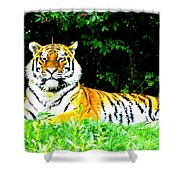 The Tiger In The Woods Shower Curtain