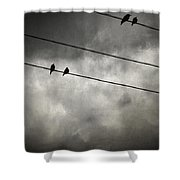 The Trace 11.25 Shower Curtain