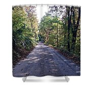The Traveler's Road Shower Curtain
