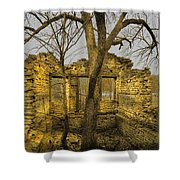 The Tree House 2 Shower Curtain