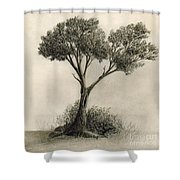 The Tree Quietly Stood Alone Shower Curtain