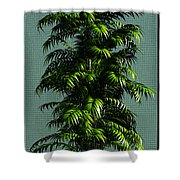 The Tree... Shower Curtain