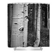 The Trees Have Eyes Shower Curtain