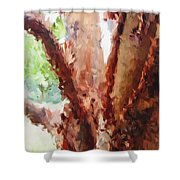 The Trees In Spring Time Shower Curtain