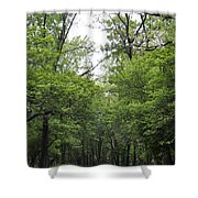 The Trees Of Illinois Shower Curtain