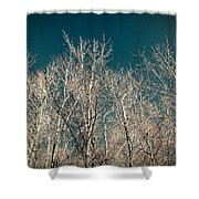 The Trees Of Teal Shower Curtain