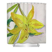 The Trickiness Of Yellow Shower Curtain