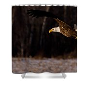The Turn Shower Curtain