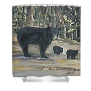 Cubs - Bears - Goldilocks And The Three Bears Shower Curtain